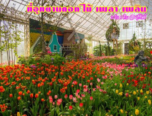 อ้อมกอดดอกไม้งาม ที่อุทยานดอกไม้ เพลา เพลิน 2 วัน 1 คืน ราคา 4,800 บาท