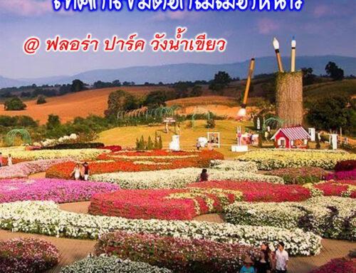 เทศกาลดอกไม้เมืองหนาว Flora Park @วังน้ำเขียว